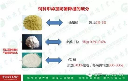 刘进辉教授支招解决夏季猪难养的问题