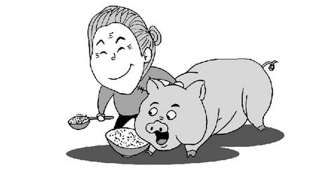 猪价上涨 辽宁、黑龙江、河北等地小涨0.1元/公斤