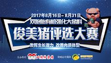 """2017双胞胎有机强化大猪料""""俊美猪""""评选大赛"""