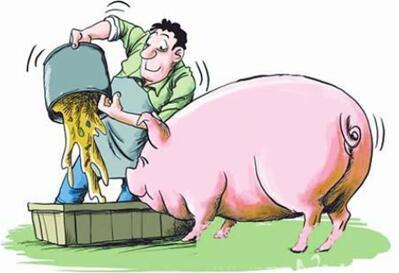 猪价回涨,养猪人注意风险!9月猪价格可期,合理出栏!