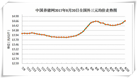 8月20日猪评:后市猪价将季节性回升 但上涨空间并不大