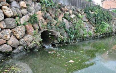 常州一无证养猪场污染农田灌溉渠 毒死数百斤鱼