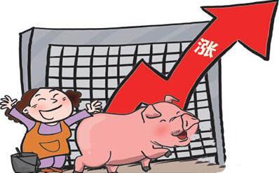 8月31日猪评:猪价小幅下跌 仔猪价格略上涨