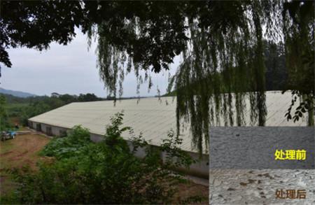 顺鑫茶棚养猪场如何走出了环保危机