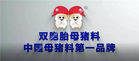 双胞胎养猪服务平台