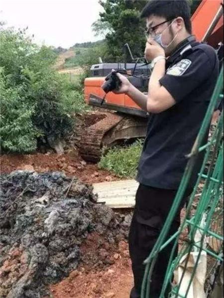 """人民日报评""""偷埋死猪"""":为何盖子在环保督察来后才揭开"""