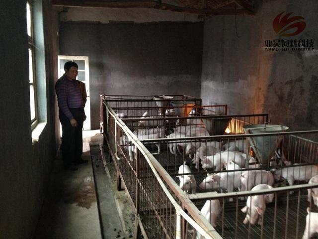 猪场老板的困惑 土地政策牵制下猪场该建在哪?