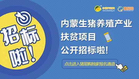 中国养猪网猪易购助力养殖扶贫!首批500万政府国企订单公开招标啦!