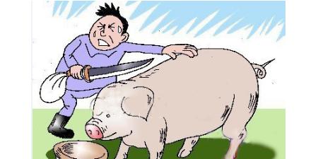 卖猪肉的私宰三头猪 被罚三万多元