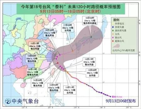 台风也阻挡不了国际友人的热情