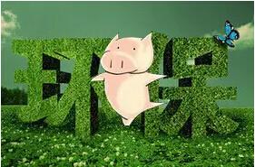 环保:环保一旦搞好了, 畜禽养殖会更有信心
