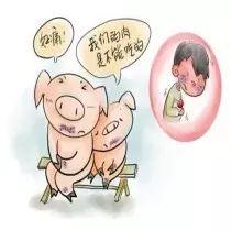 猪流行性腹泻的症状及治疗!经典!
