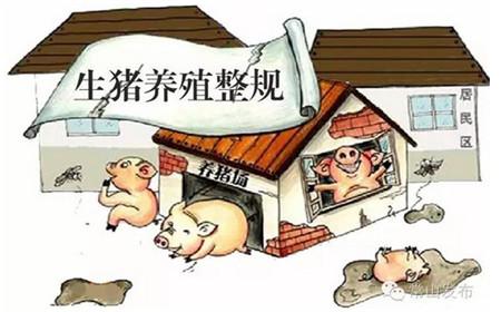 环保拆迁力度大就能够说明下半年缺猪吗?