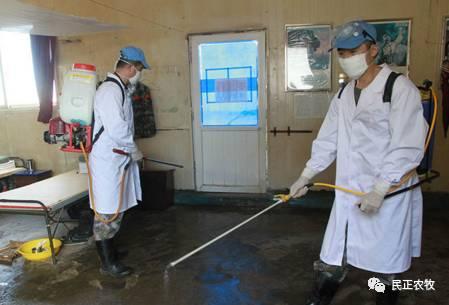 生猪养殖场怎么消毒病菌才能降到最低
