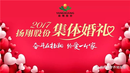 """""""我们结婚啦~""""—扬翔股份2017年集体婚礼隆重举行!"""