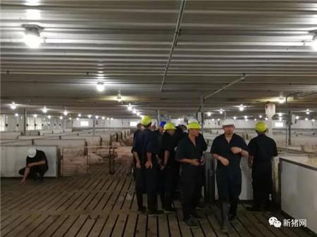 快来围观~美国Clemens母猪存栏量5000头猪场内部大曝光,这高科技放哪都是一流的!
