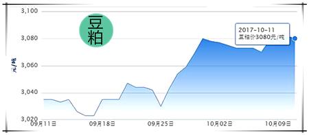 10月11日猪评:猪价必反弹,距离上涨还有多远?