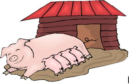 双胞胎集团:猪场80%的效益都在这儿,养猪人你做对了吗?