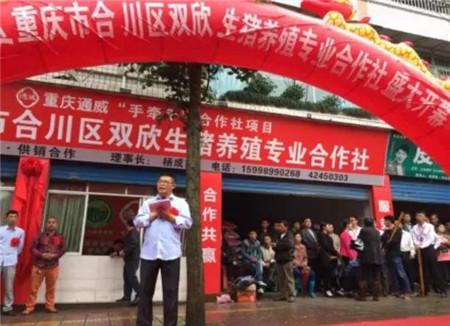 重庆双欣合作社盛大开业, 将建500亩种养结合生猪示范基地