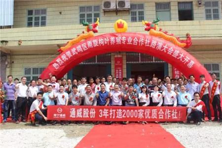 通威农合社走入南宁,成功转型的饲料经销商必须懂格局