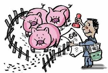 养猪业正值大清洗,有人却在偷偷乐,你知道吗?