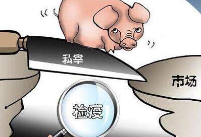 两部委打击危害肉品安全行动 严查私屠滥宰等行为