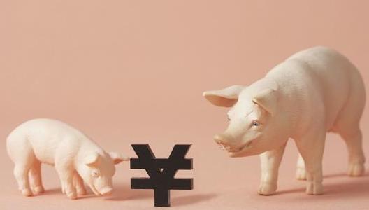 你的猪场亏钱了?为何规模猪场赚钱?规模化是趋势!