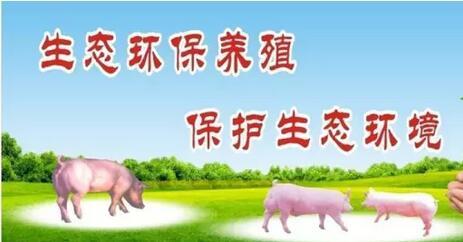 集思广益,博取众长,让环保不再成为中国养殖的困扰