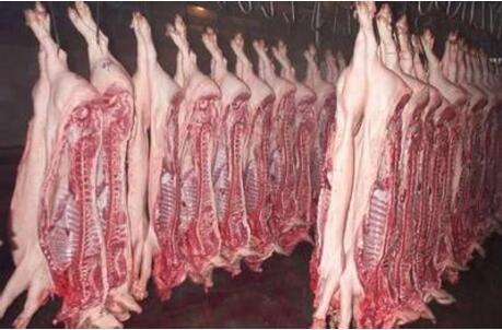 拟再进口120万吨猪肉,低迷的猪市场颠覆性洗牌要多久?