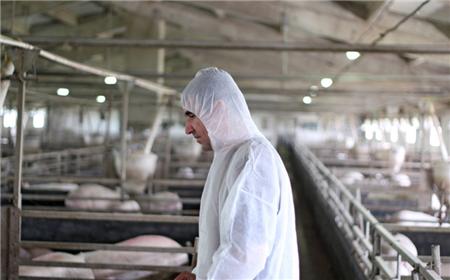70%底层兽医用药不合理,养殖人该怎么办呢?
