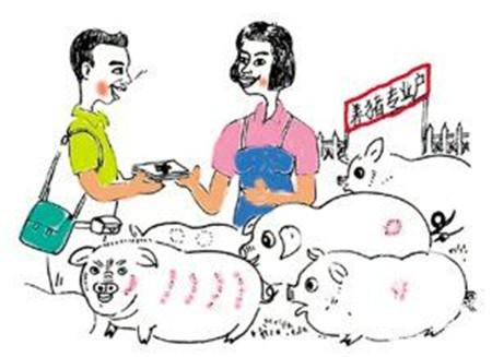 养猪有这8大国家补助,有几个农村小养猪场也能领到