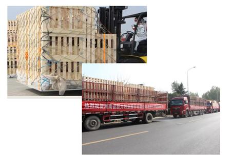 热烈祝贺河南省新大牧业股份有限公司法国引种圆满成功!