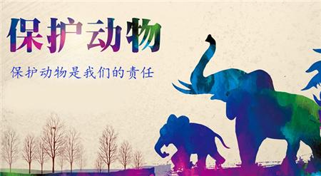养猪户手下这份利好 中国首部动物福利行业标准通过专家审查