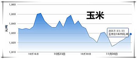 11月12日猪评:气温再下降,市场需求回升,猪价略有回温