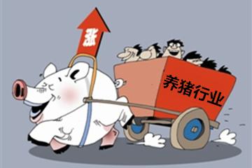 短期猪价以稳为主 仔猪价格持续下跌