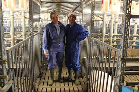 世界养猪强国德国养猪如何规模化