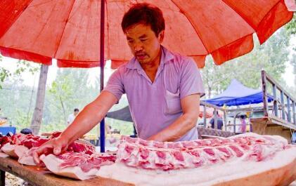 从这几大因素判断,猪价继续上涨的空间有多大