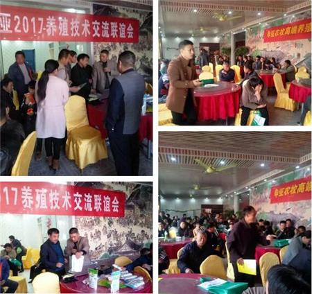 11月10日申亚农牧在萧县开展市场会议,本次会议主要向养殖户们讲授牛羊养殖技术及秋冬季节的疾病防治,当地养殖户都积极参与