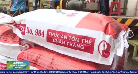APEC会议期间,越南通威亮相CGTN,吸引全球目光聚焦中国饲料企业
