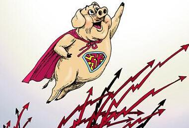 猪肉股全线暴涨,猪价要涨的信号
