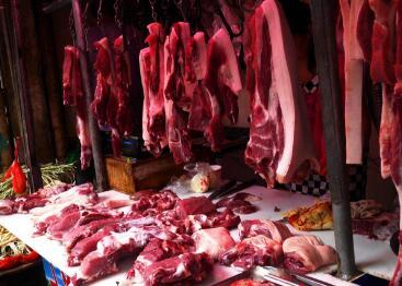 为何如今猪肉越来越难吃了 专家:还真怨不得养猪人