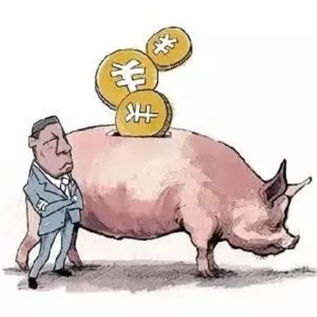 东北连涨三天!未来猪价将逐步开启小幅度上涨