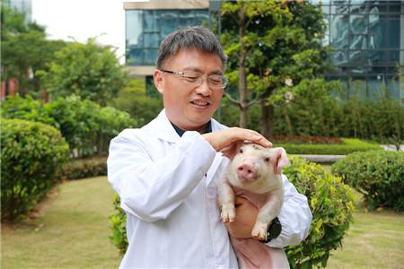 可爱小猪,如若你是天使——播恩营销人对行业的朴实感恩情怀