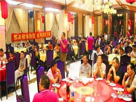 武汉中博生物:伪狂力康引爆阳春市场