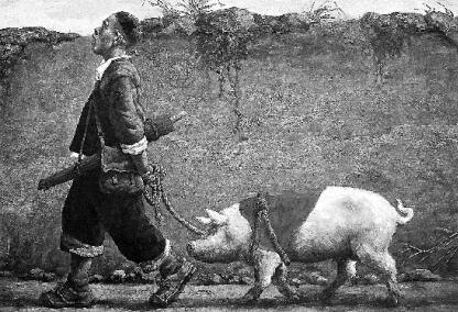 明年养猪能不能赚钱?看了本文你就知道了!