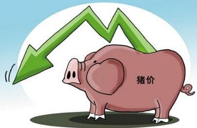 猪价涨幅有再度扩大趋势!大涨将来临?