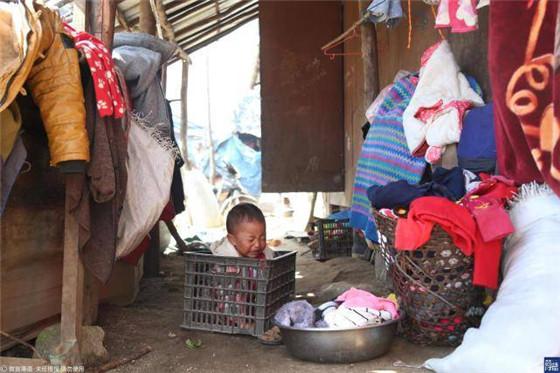 这儿的人一周只能吃一次肉 有人在厕所养猪