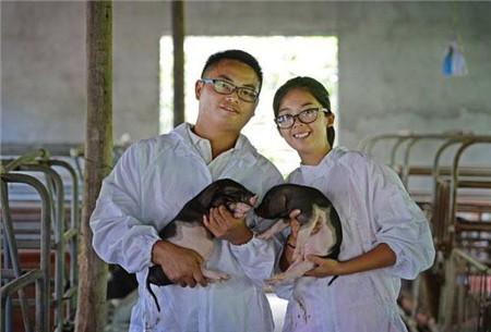 多大规模的猪场才是效益最佳的猪场