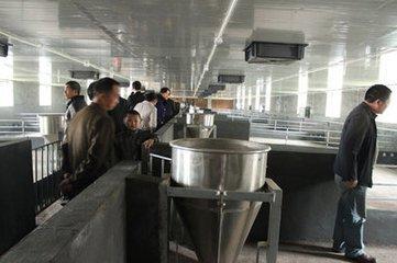 现代猪场常用设备