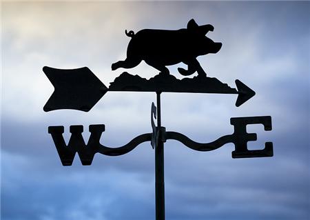 业内:南方的消费旺季即将开启,长期来看将利好猪价